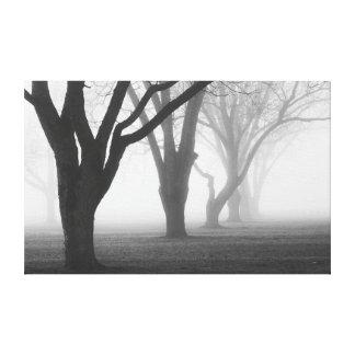 Arbres dans un paysage de brouillard toiles