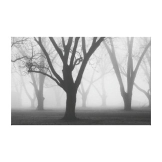Arbres dans un paysage du brouillard II Toiles