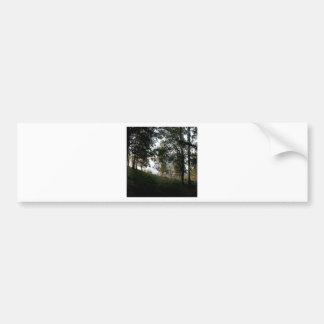 Arbres de nature par les bois autocollant de voiture