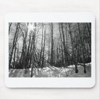 Arbres en hiver tapis de souris