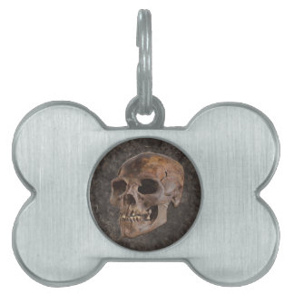 Archaeology II - Skull on Stone-effect Background Pet Name Tag