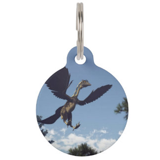 Archaeopteryx birds dinosaurs flying - 3D render Pet ID Tag