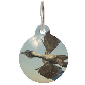 Archaeopteryx birds dinosaurs flying - 3D render Pet Tag