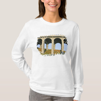 Arched supports Patterson Memorial Bridge T-Shirt