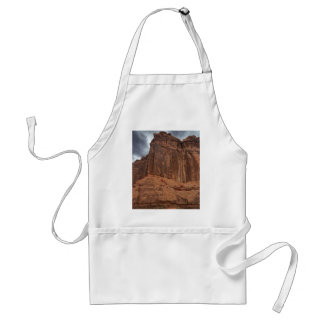 Arches National Park The Organ Standard Apron