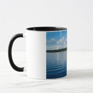Archipelago on the Baltic Sea coast in Sweden Mug