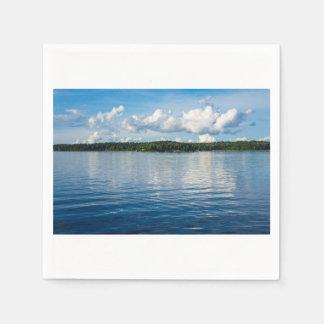 Archipelago on the Baltic Sea coast in Sweden Paper Napkin