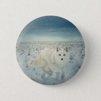 Arctic Fox 2 Inch Round Button