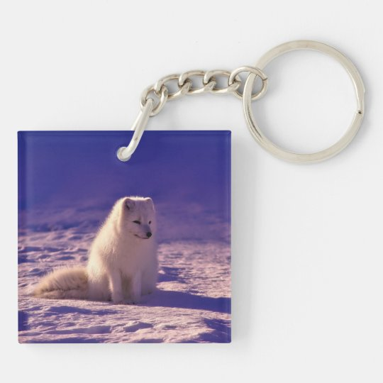 Arctic Fox Double-Sided Square Acrylic Keychain