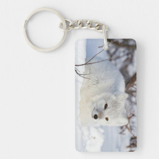 Arctic Fox in winter Keychain