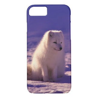 Arctic Fox iPhone 8/7 Case