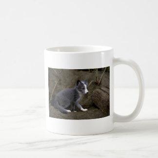 Arctic Fox kit Coffee Mug