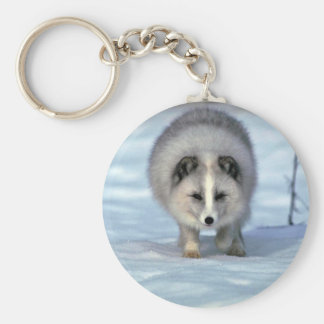 Arctic Fox on snow Basic Round Button Keychain