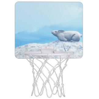 Arctic hare, lepus arcticus, or polar rabbit mini basketball hoop