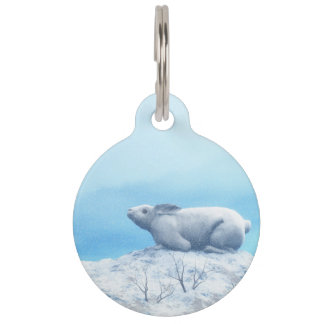 Arctic hare, lepus arcticus, or polar rabbit pet name tag