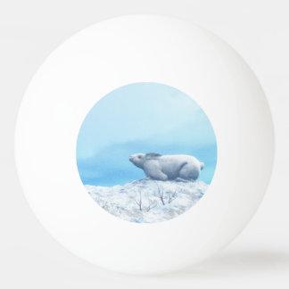 Arctic hare, lepus arcticus, or polar rabbit ping pong ball