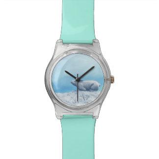 Arctic hare, lepus arcticus, or polar rabbit wrist watches