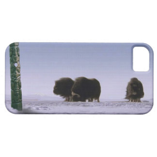 Arctic Musk Oxen & Totems Bovine Wildlife Art Case For The iPhone 5