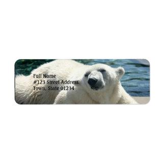 Arctic Polar Bear Return Address Label