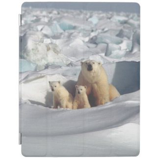 Arctic Polar Bears Cubs Wildlife iPad Smart Cover iPad Cover