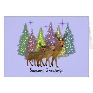 Arctic Reindeer Holiday Card