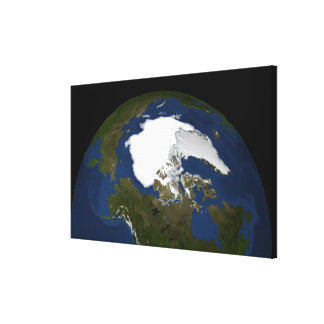 Arctic sea ice in 2005 canvas print