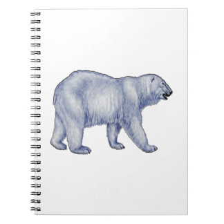Arctic Survivor Notebooks