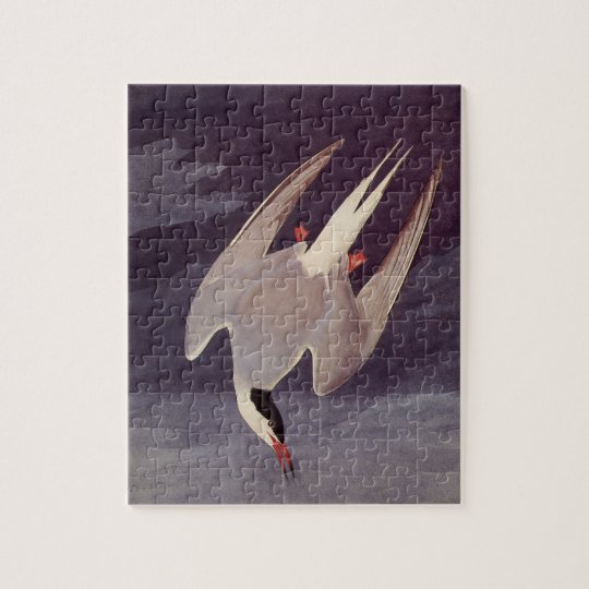 Arctic Tern by John James Audubon, Vintage Birds Jigsaw Puzzle