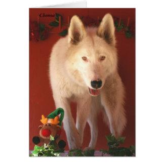 Arctic Wolf Christmas Card