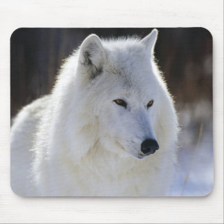 Arctic Wolf Mouse Pad
