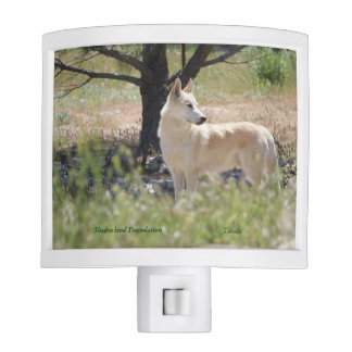 Arctic Wolf Night Light