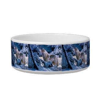 Arctic wolf - white wolf - wolf art bowl