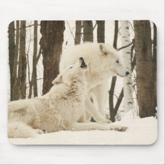 Arctic Wolves Mouse Pad