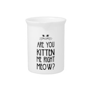 Are You Kitten Me Right Meow Funny Cat Pitcher