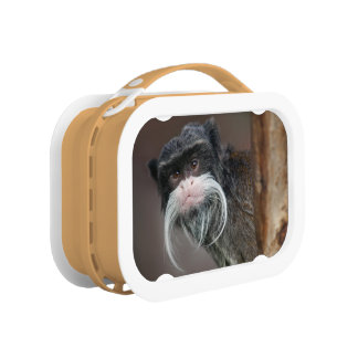 Are you my Barber??? Lunch Box