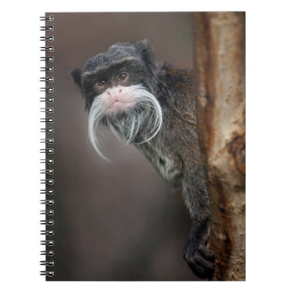 Are you my Barber??? Notebook