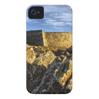 Areosa fortress iPhone 4 covers