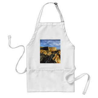 Areosa fortress standard apron
