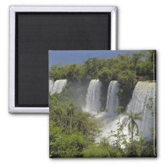 Argentina, Iguacu Falls in sun. Square Magnet