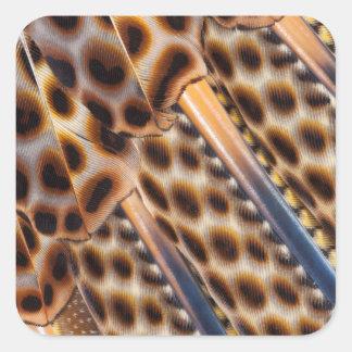 Argus Pheasant Feather Design Square Sticker