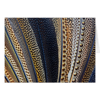 Argus Pheasant wing feathers Card