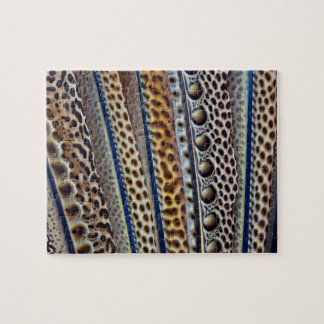 Argus Pheasant wing feathers Jigsaw Puzzle