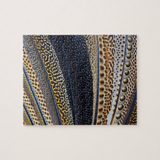 Argus Pheasant wing feathers Puzzles