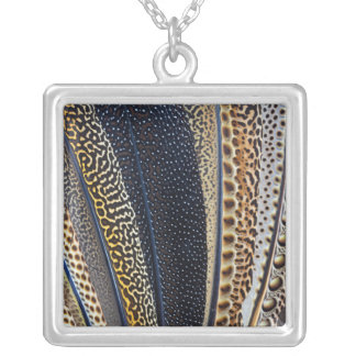 Argus Pheasant wing feathers Silver Plated Necklace