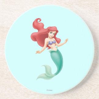 Ariel Swimming Coaster