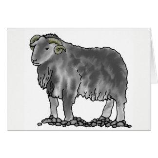 Aries Ram Herdwick Sheep Art Card