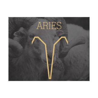 Aries Zodiac Sign | Custom Background + Text