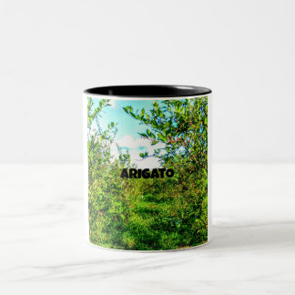 ARIGATO    Blueberry field Two-Tone Coffee Mug
