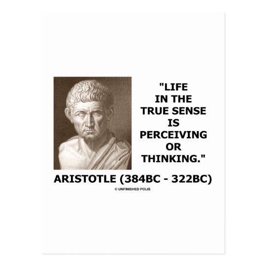 Aristotle Life True Sense Perceiving Or Thinking Postcard
