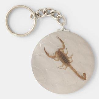 Arizona Bark Scorpion Basic Round Button Keychain